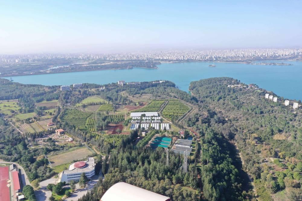 Narenciyenin Gen Bankası Çukurova Üniversitesi